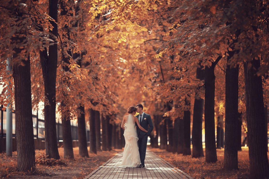 allestimento floreale in autunno o in inverno